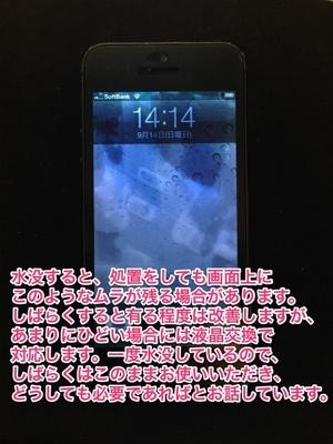 sIMG_9495.jpg
